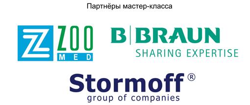 Логотипы на сайт 500 рх