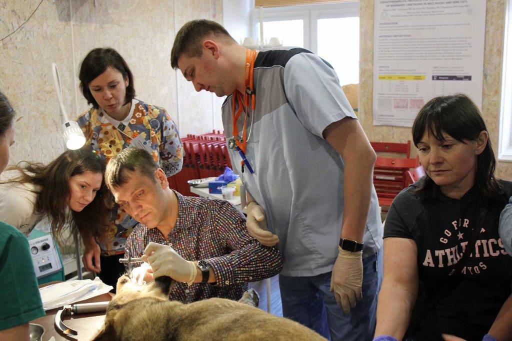 Отчёт о xiii Всероссийской конференции по вопросам ветеринарной  Отчёт о xiii Всероссийской конференции по вопросам ветеринарной анестезиологии реаниматологии и интенсивной терапии